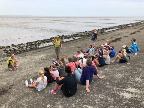 Groep 6, Schoolreisje Natuurschool Lauwersoog, 25 mei 2018 (1)