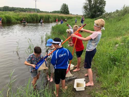 Groep 6, Schoolreisje Natuurschool Lauwersoog, 25 mei 2018 (4)