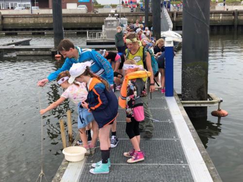Groep 6, Schoolreisje Natuurschool Lauwersoog, 25 mei 2018 (59)
